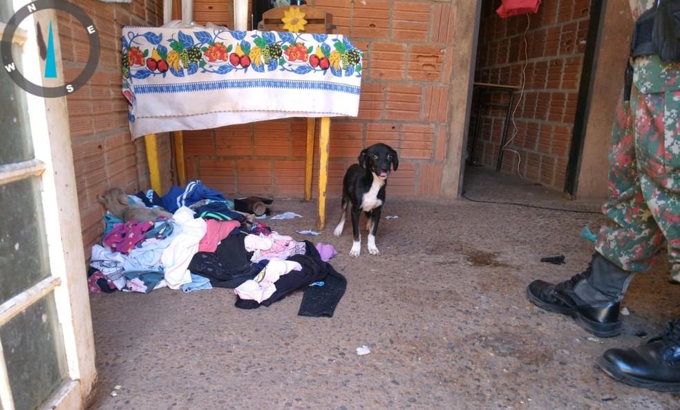 Policiais entraram em imóvel após denúncia e recolheram animais em MS — Foto: PMA/Divulgação