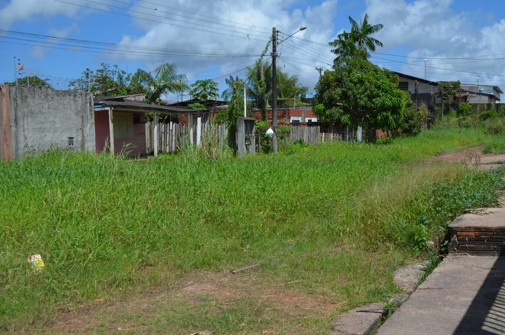 -  Avenida Tenente Amaral, no bairro Zerão, em Macapá, é tomada por mato  Foto: Jorge Abreu/G1