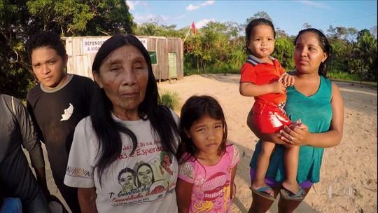 Madeireiras funcionavam para explorar ilegalmente árvores da terra indígena Karipuna, diz investigação