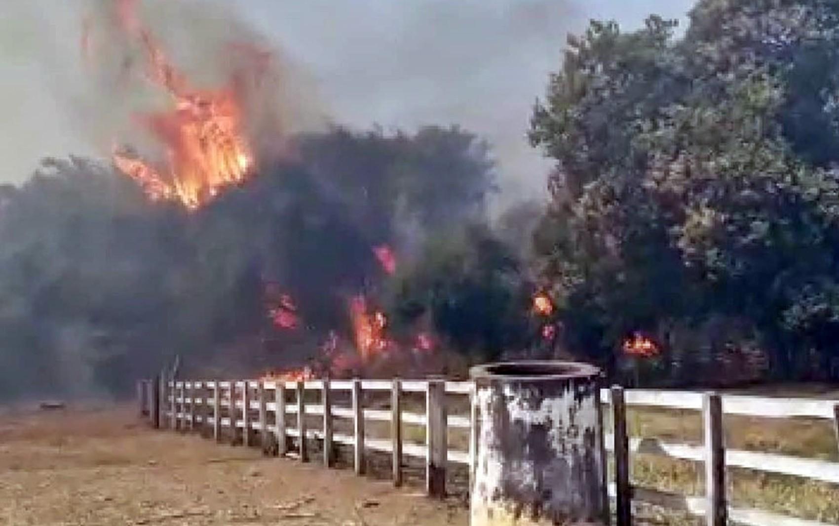 Incêndio destrói 70 hectares na zona rural de Guaranésia, MG - Notícias - Plantão Diário