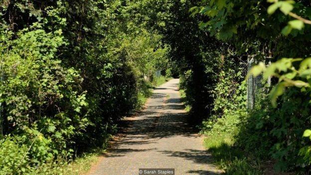 A Bertha Benz Memorial Route segue o curso que a pioneira percorreu em 1888, na primeira viagem de longa distância em um carro a gasolina (Foto: Alamy via BBC News)