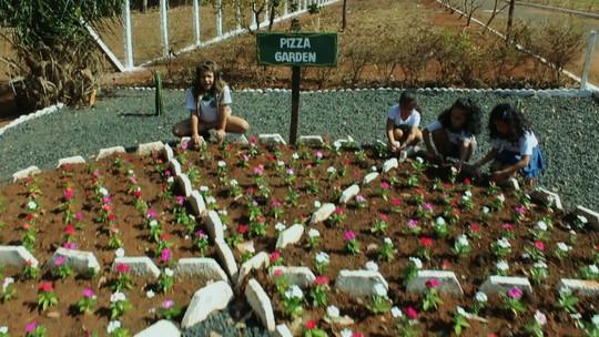 Revitalização do Parque Morrinhos, em Goiás, é o tema do Nós.Doc