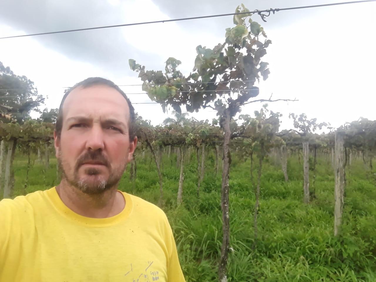 Jeferson Guerra, produtor que perdeu 90% das videiras devido aos efeitos do 2,4D (Foto: Jeferson Guerra/Arquivo Pessoal)