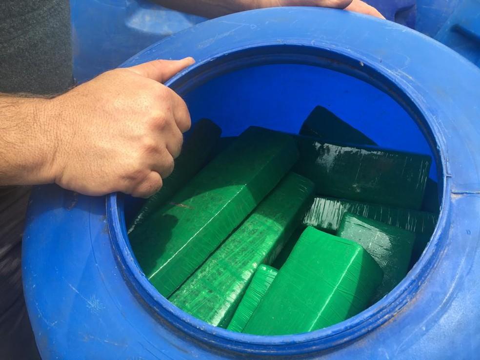 Grande quantidade de droga foi apreendida pela Polícia Rodoviária — Foto: Aline Costa/G1