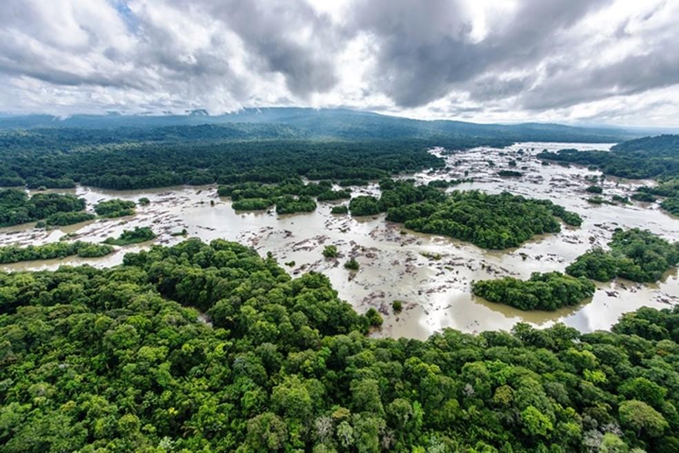 Parque Amazônico da Guiana, na Amazônia, é a maior reserva florestal da França — Foto: Guillaume Feuillet/Parc amazonien de Guyane