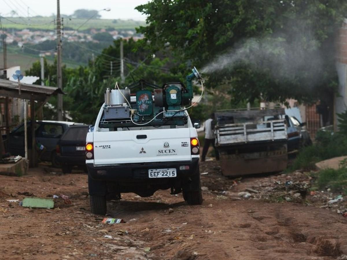 Após morte de macacos em área urbana, Campinas faz nebulização contra febre amarela