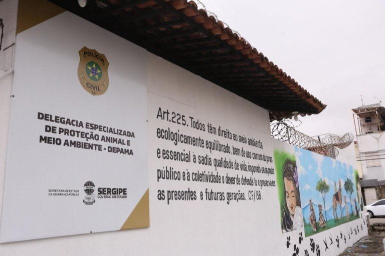 Mulher é detida em Aracaju após postar maus-tratos contra filhotes de cachorro em rede sociai
