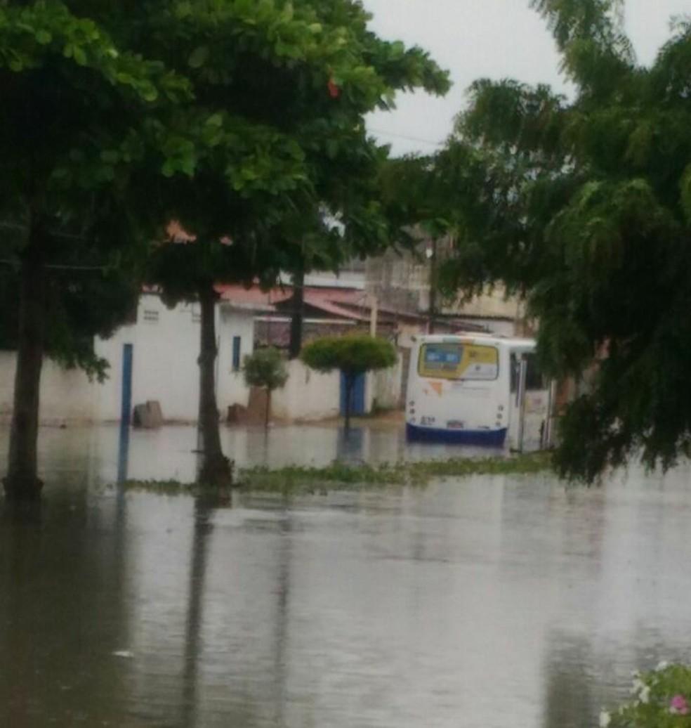 Ônibus da linha L não conseguiu passar pela Avenida Doutor Luiz Antônio e ficou no meio do caminho (Foto: Arioneida Alves/cedida)