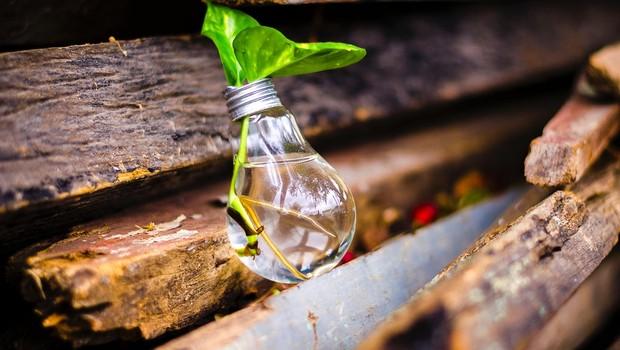 Ideia; inovação; empreendedorismo (Foto: Pexels)