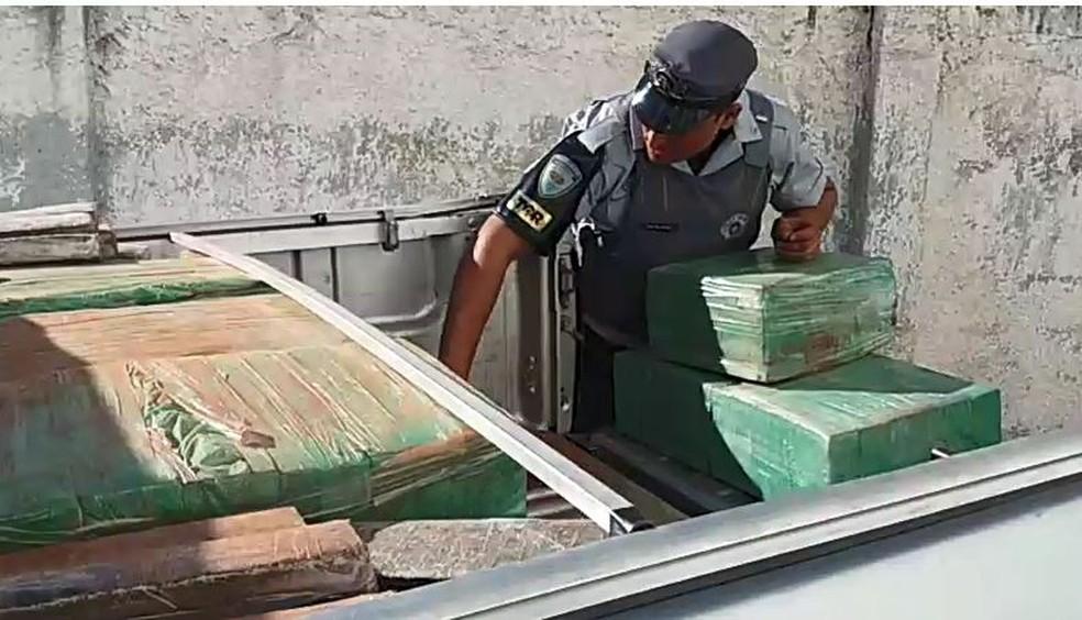 Motorista confessou que foi contratado para levar a droga até a capital paulista; toda a maconha foi apreendida — Foto: Polícia Rodoviária Bauru/Divulgação