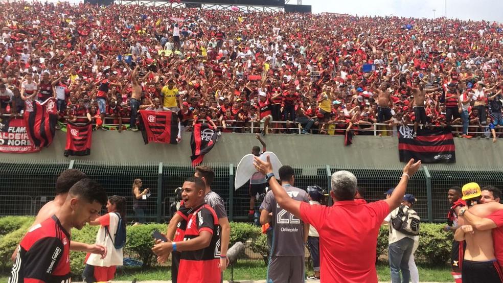Flamengo comemora título da Copinha (Foto: Reprodução)