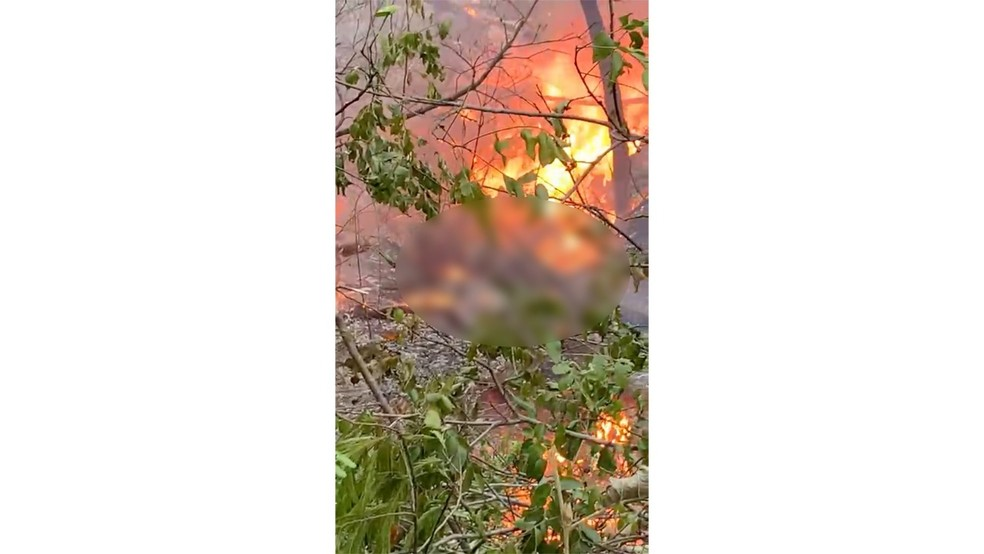 Aeronave caiu em área de mata a cerca de 20 km da zona urbana de Rondonópolis — Foto: Reprodução