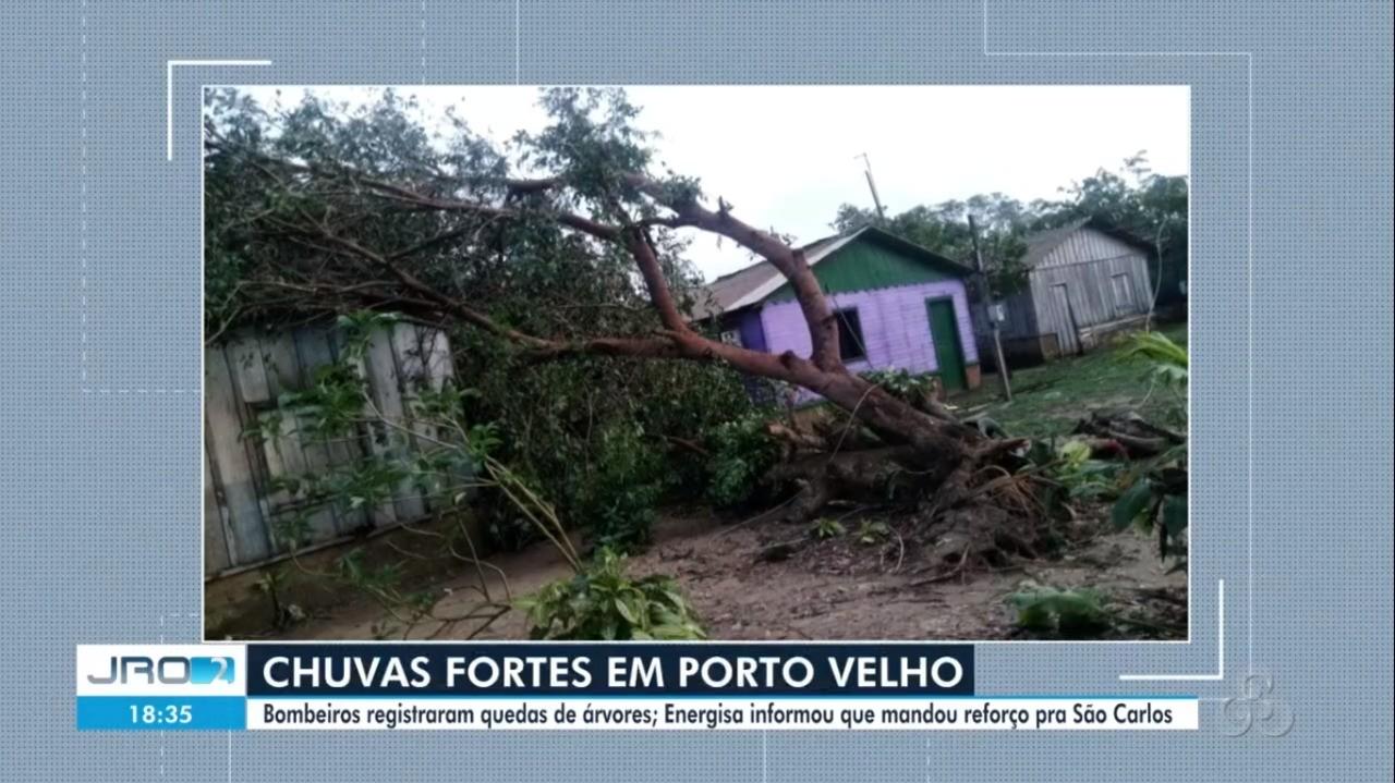 Temporal derruba 3 árvores e deixa bairros sem energia em Porto Velho
