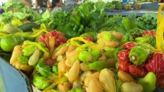 Estiagem facilita escoamento de produtos agrícolas de famílias em Cruzeiro do Sul
