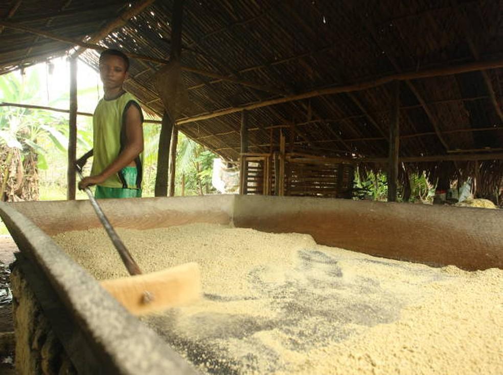 Saca de farinha de mandioca custa R$ 210,00 em Machadinho DOeste e R$ 230,00 em Pimenta Bueno (Foto: Igor Mota/Amazônia Jornal)