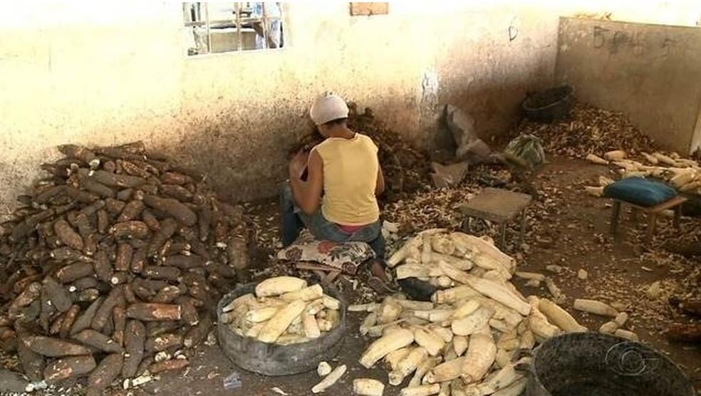 Feira Grande, Alagoas, registrou todos os 90 flagrantes de trabalhadores encontrados em condições análogas às de escravo no ano de 2018 — Foto: Reprodução/TV Gazeta