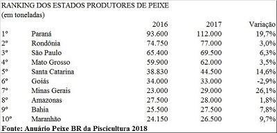 Ranking dos estados brasileiros produtores de peixe (Foto:  )