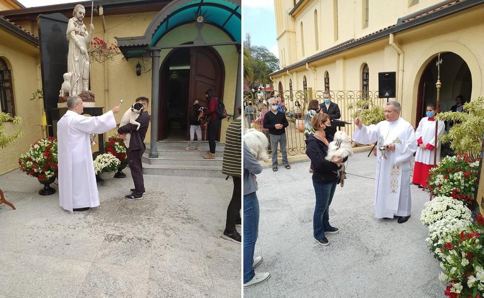 Cães foram abençoados em Boituva no Dia de São Roque — Foto: Paróquia de São Roque/Divulgação