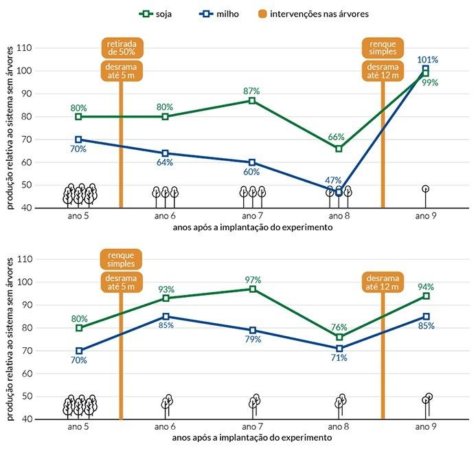 Gráfico com os resultados obtidos ao longo dos anos pela Embrapa  (Foto: Divulgação/Embrapa)