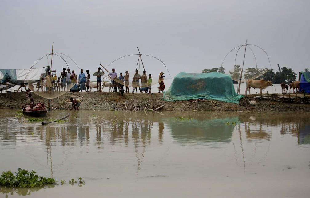 Moradores de uma vila inundada se refugiam em banco de areia no rio Brahmaputra, em 14 de julho. O governo de Assam informou neste domingo (19) que mais de 70 pessoas já morreram na região — Foto: Anupam Nath/AP