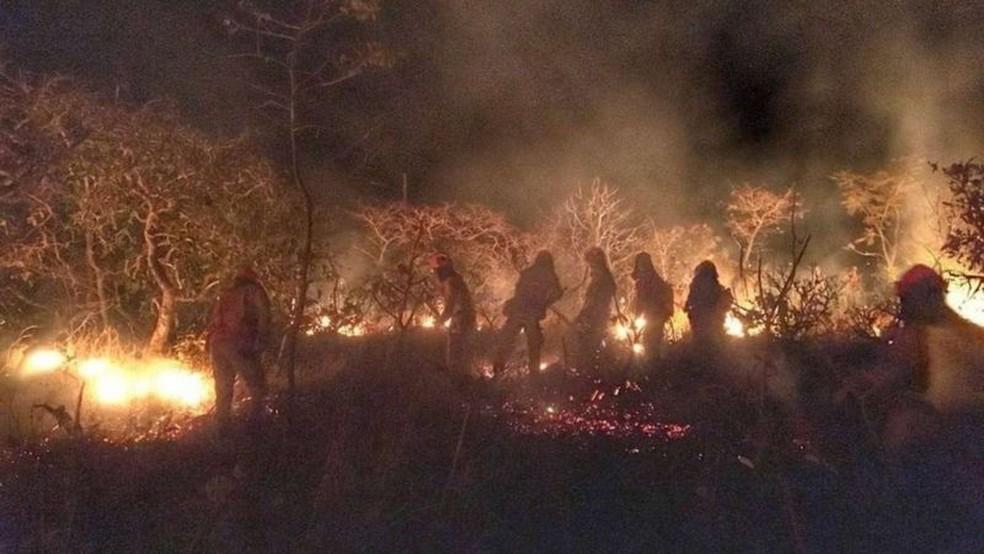 Bombeiros apagam incêndio na Caatinga no Ceará — Foto: SSPDS-CE