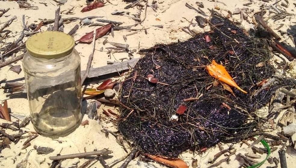 Óleo cru foi encontrado em capim-agulha, principal alimento do peixe-boi, na Praia da Lama (PI) — Foto: Pesca Solidária da Comissão Ilha Ativa