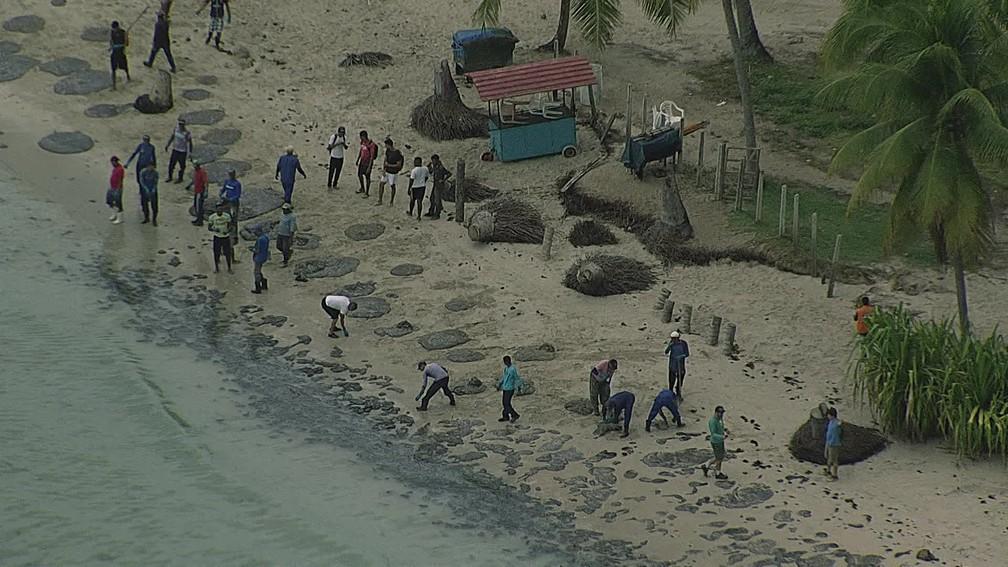 Equipes trabalham para fazer a retirada das manchas de óleo que atingiram a Praia dos Carneiros, no Litoral Sul de Pernambuco, nesta sexta-feira (18) — Foto: Reprodução/TV Globo