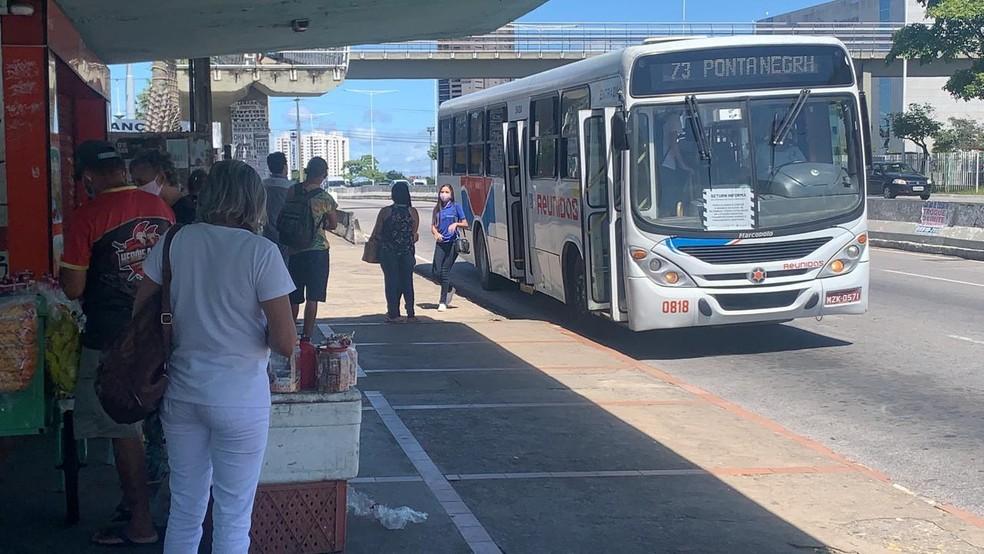 Parada de ônibus em Natal — Foto: Mariana Rocha/Inter TV Cabugi