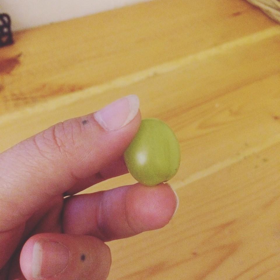 A menina quase morreu depois de engasgar com uma uva (Foto: Reprodução/ Facebook)