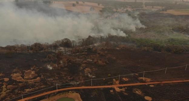 Depois de incêndio em fazenda, Embrapa Pecuária Sudeste anuncia medidas preventivas