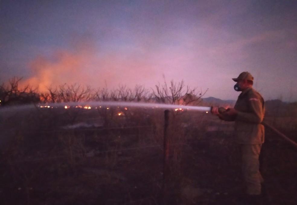 Denúncias de incêndios, quando há a identificação do causador, contribuem para a redução das queimadas, dizem os Bombeiros — Foto: Wandenberg Belém/SVM