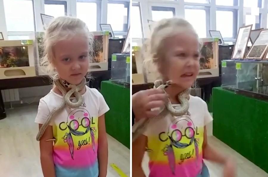 Menina é atacada por cobra em zoo russo (Foto: Reprodução/The Sun)