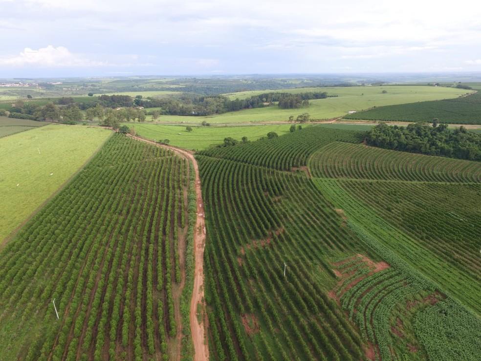 Drone ajudou a encontrar mais de 400 quilos de maconha em Ocauçu — Foto: Polícia Rodoviária Federal/Divulgação