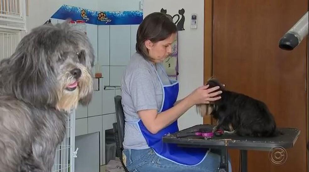 Empresária de Araçatuba deixou depressão após contato com animais — Foto: Reprodução/TV TEM