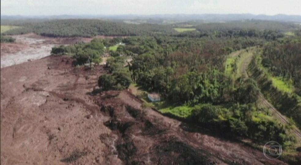 Terra Indígena Ituna-Itatá, no PA. — Foto: Reprodução / Jornal Nacional