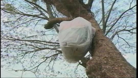 Moradores alertam sobre a falta de coleta seletiva em alguns bairros de Uruguaiana