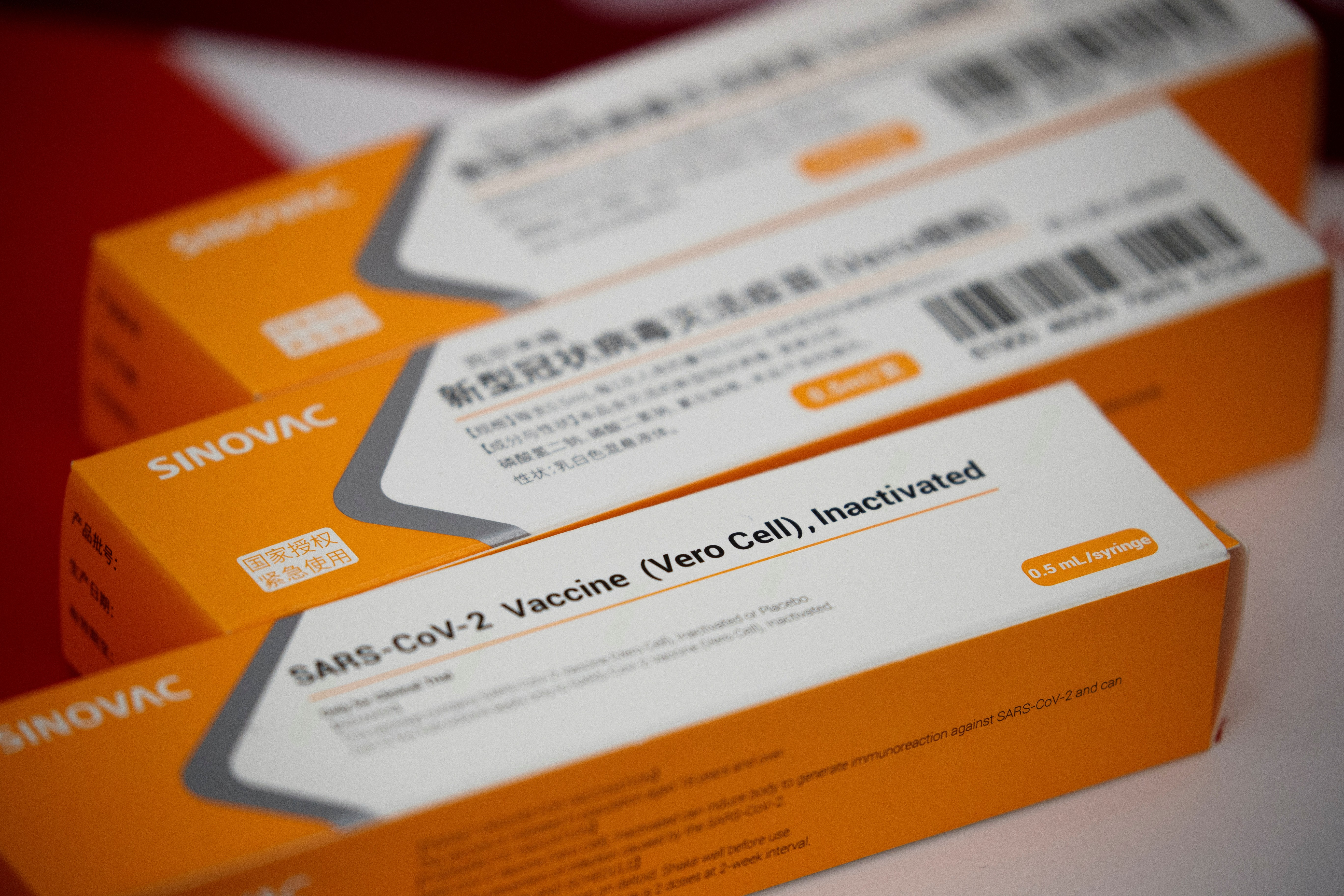 Governador anuncia que Pará terá 124 mil doses de vacina contra Covid-19