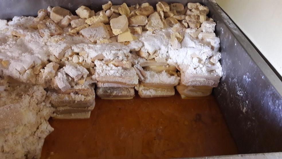 Produtos já estavam em estado de decomposição (Foto: Adapec/Divulgação)