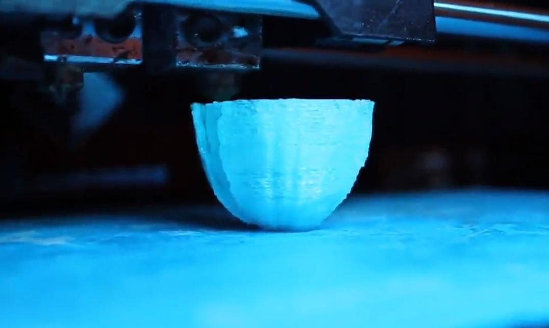 Flor sendo feita por impressora 3D (Foto: ERIN WINICK)