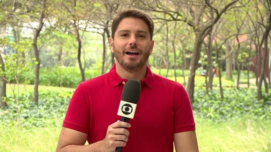 Qual time deve ser destaque do 2° turno do Campeonato Brasileiro? Comentaristas opinam