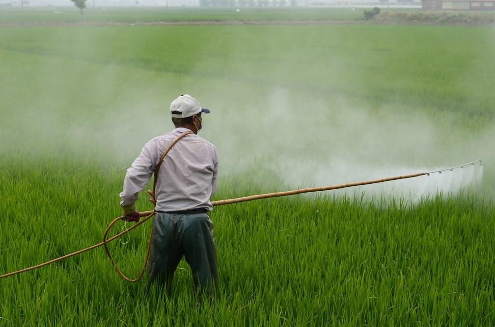 Fungicida banido na França pode afetar sistemas hormonais humanos — Foto: Pixabay