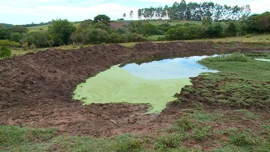 Estiagem provoca prejuízo de R$ 300 milhões a agricultores da Região Sul do Rio Grande do Sul