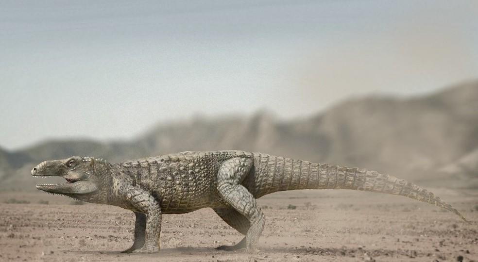 Como seria o Pagosvenator candelariensis no seu habitat da época  (Foto: Ilustração Renata Cunha/UFRGS/Divulgação)