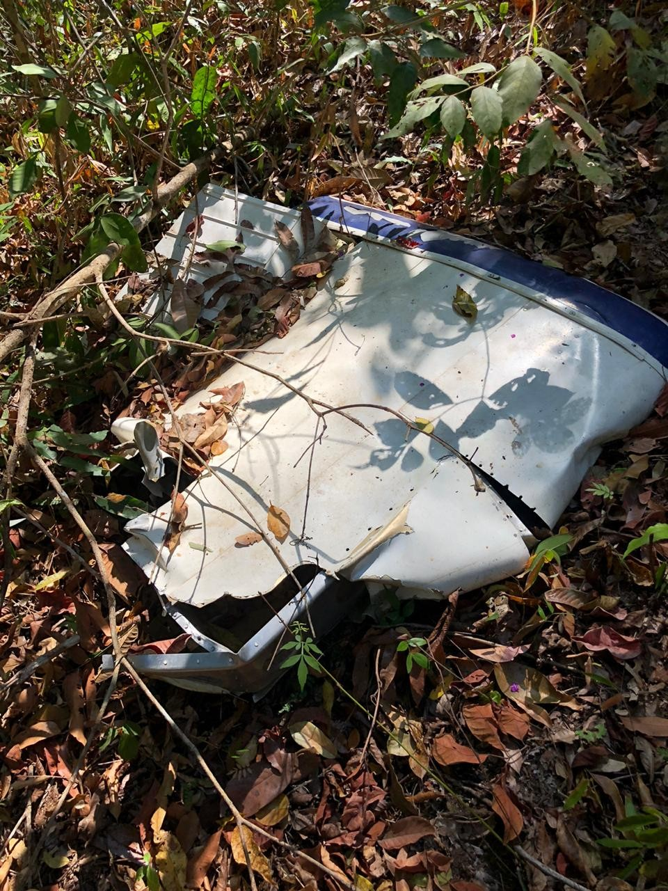 Destroços de avião são localizados em área de mata em MT; polícia acha suposta arcada dentária