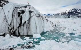 A WaterBear Network é a Netflix de documentários sobre mudanças climáticas