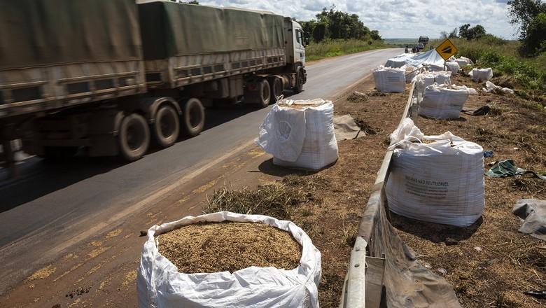 soja-estrada-carga-acidente-br-158 (Foto: Fernando Martinho/Ed.Globo )