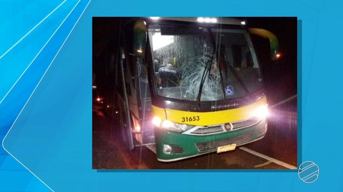 Ciclista morre atropelado por ônibus em rodovia federal, em Fátima do Sul, MS