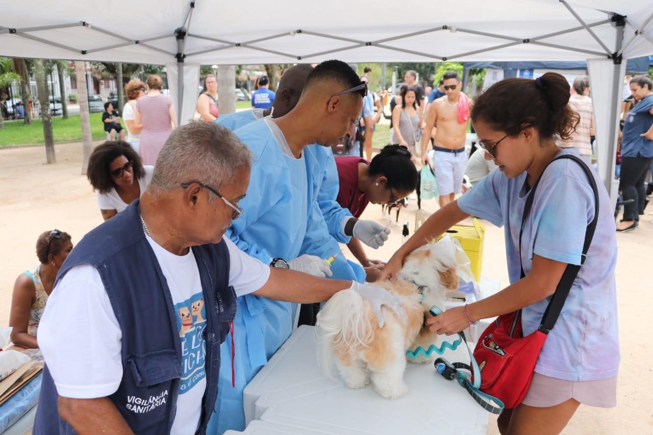 Pet Day Downtown realiza microchipagem gratuita para cães no Rio