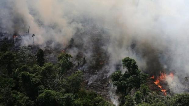 O Inpe afirma que foram detectados mais de 72 mil focos de queimada neste ano na Amazônia (Foto: REUTERS/BBC)