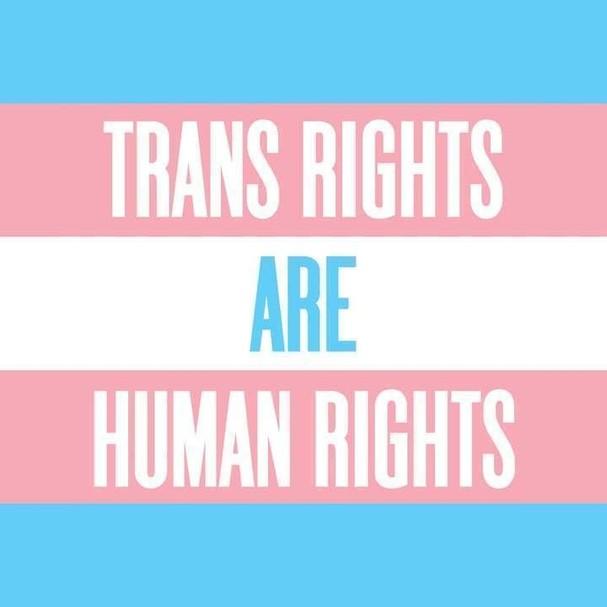 Direitos trans são direitos humanos (Foto: Reprodução)